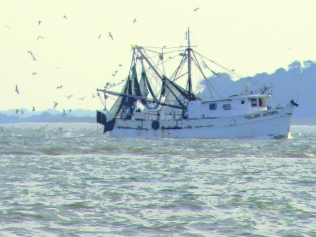 shrimp boat hhi gal ret-001