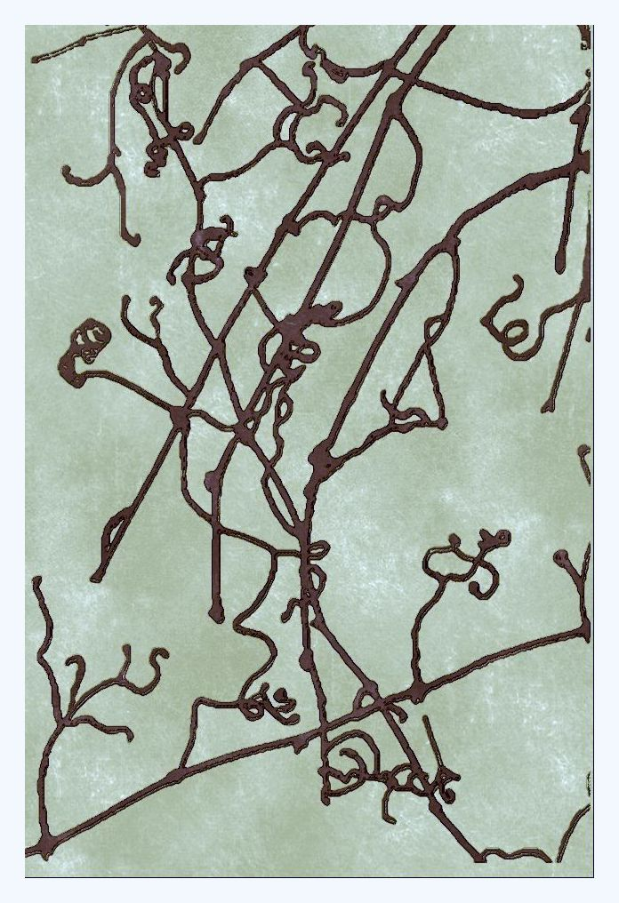 Sketched 1967 a gall curlicue vines-002