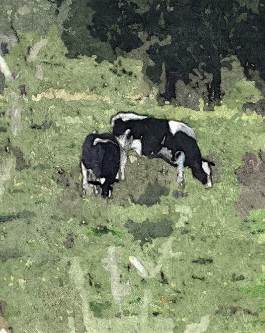 Sketched bw shenandoah cows oil ret-001 gall