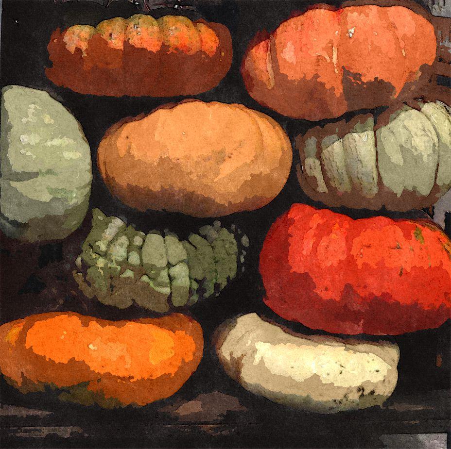 Sketched pumpkins 1 gal